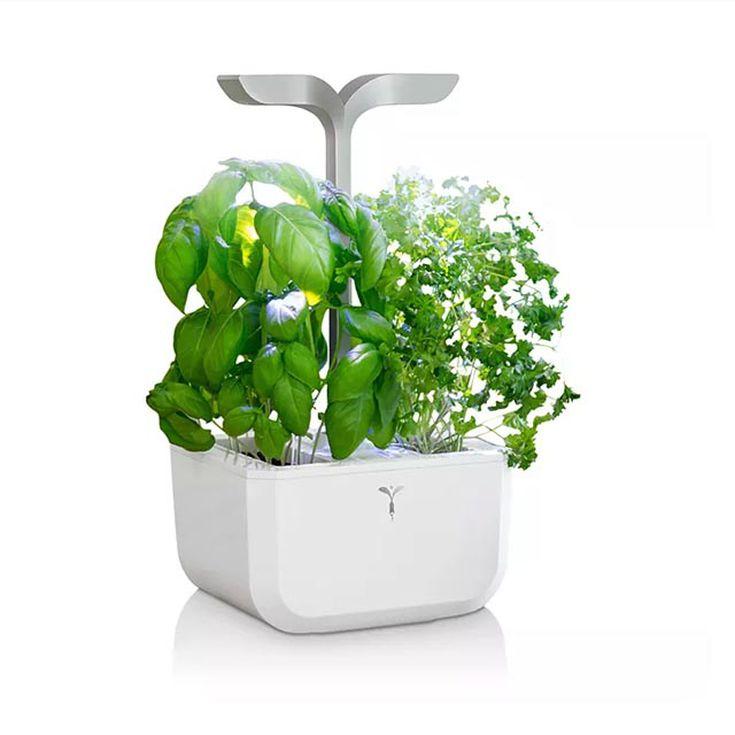 The 14 Best Plant Grow Lights Of 2020,Kitchen Helper Stool Ikea