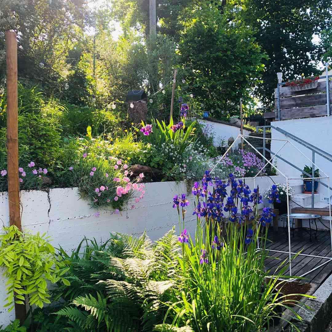 Flower garden behind house