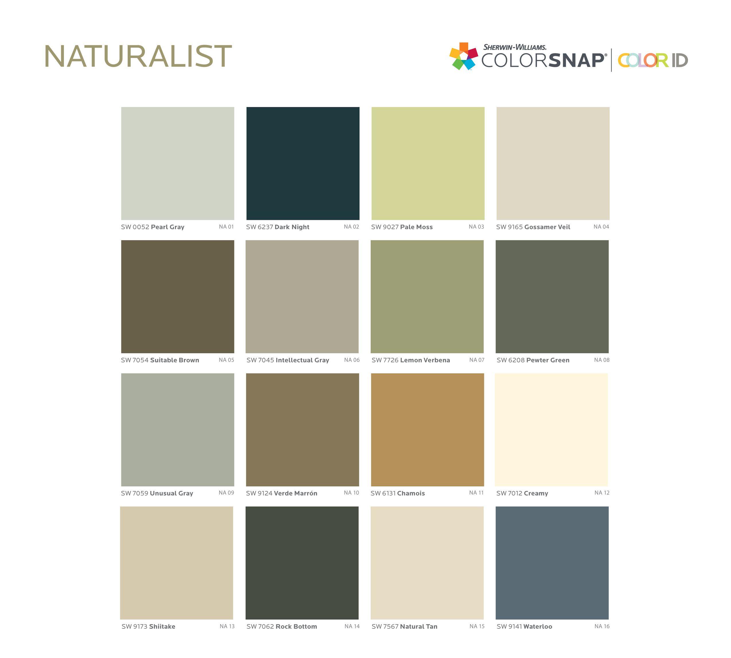 Naturalist paint color palette