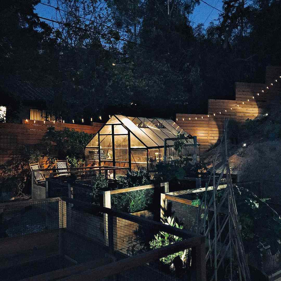 Outdoor garden with greenhouse