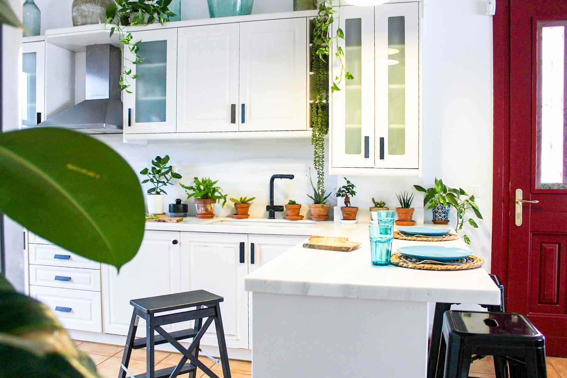 White kitchen filled with plants.