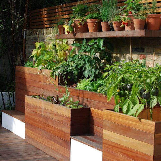Wall Raised Garden Beds