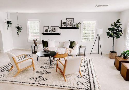 Living room with fluffy wool rug.
