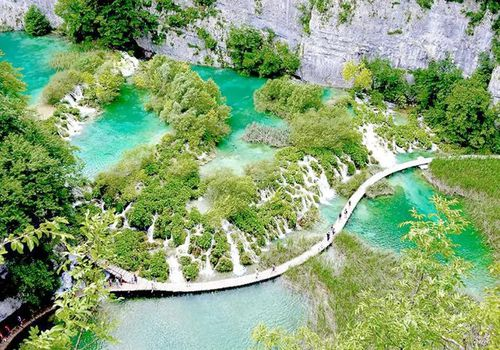 Lush Green Lakes in Croatia