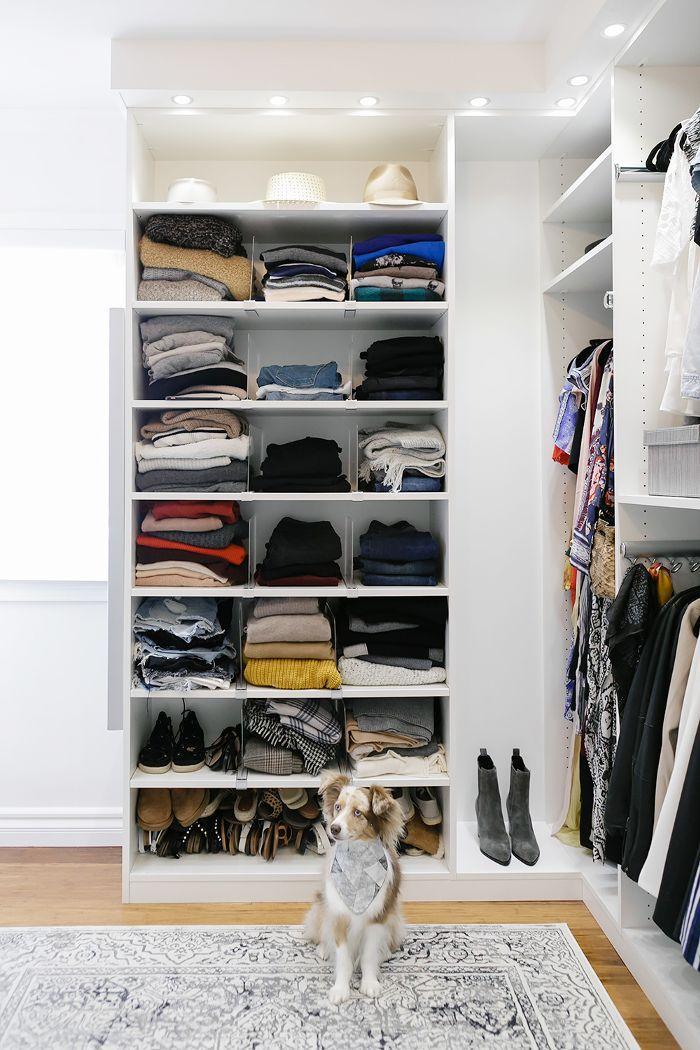 Puppy in front of walk-in closet open shelves