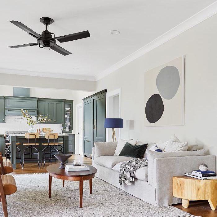 Emily Henderson—Small Living Room Makeover