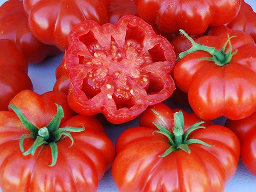 Red Rosso Sicilian tomato.