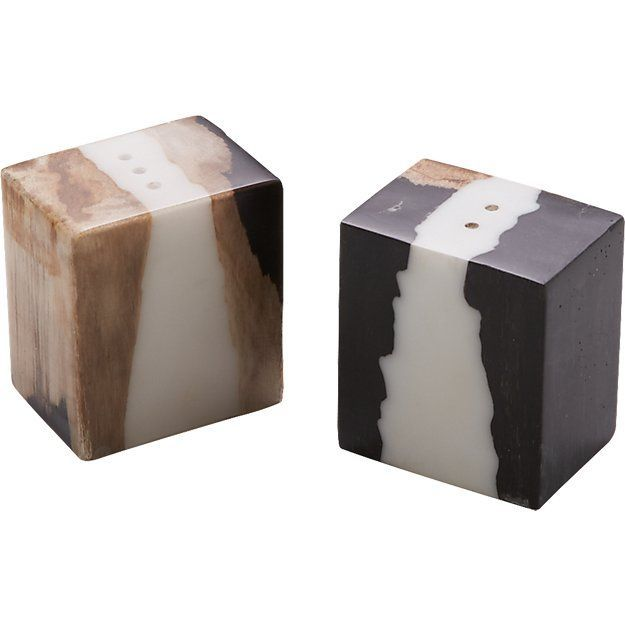 CB2 Malcolm Petrified Wood Salt and Pepper Shaker Set