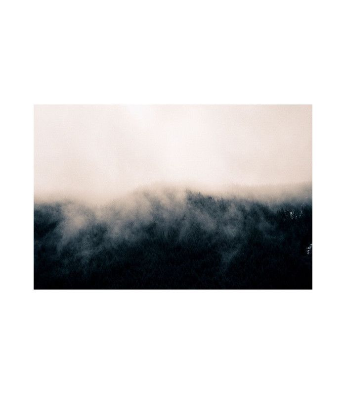 Mist Six Art Print by Brian Merriam