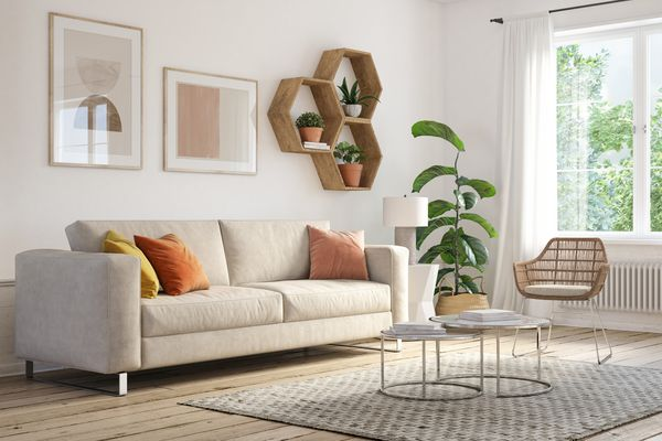 living room with a carefully selected area rug
