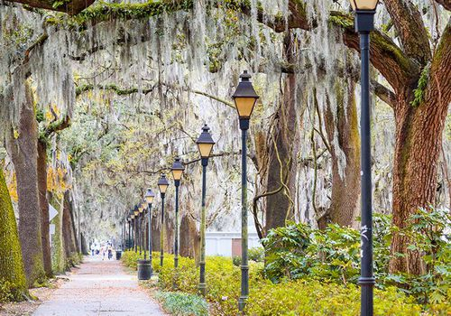 Best Southern Cities: Savannah