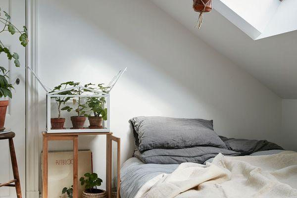 plant-filled attic bedroom