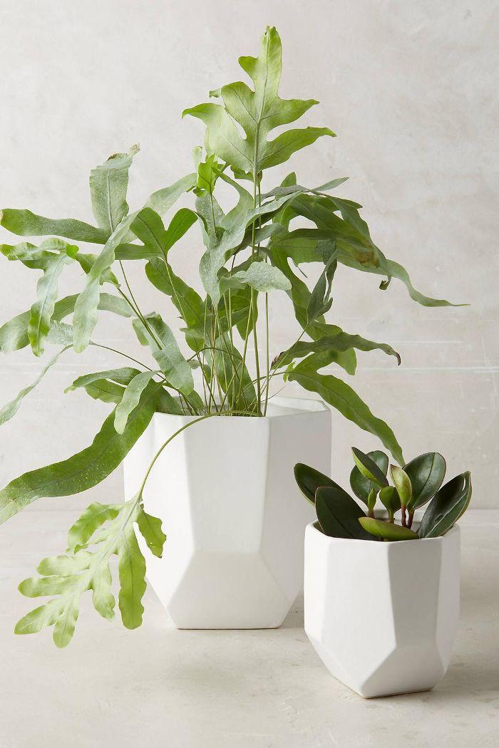Cut Ceramic Planter
