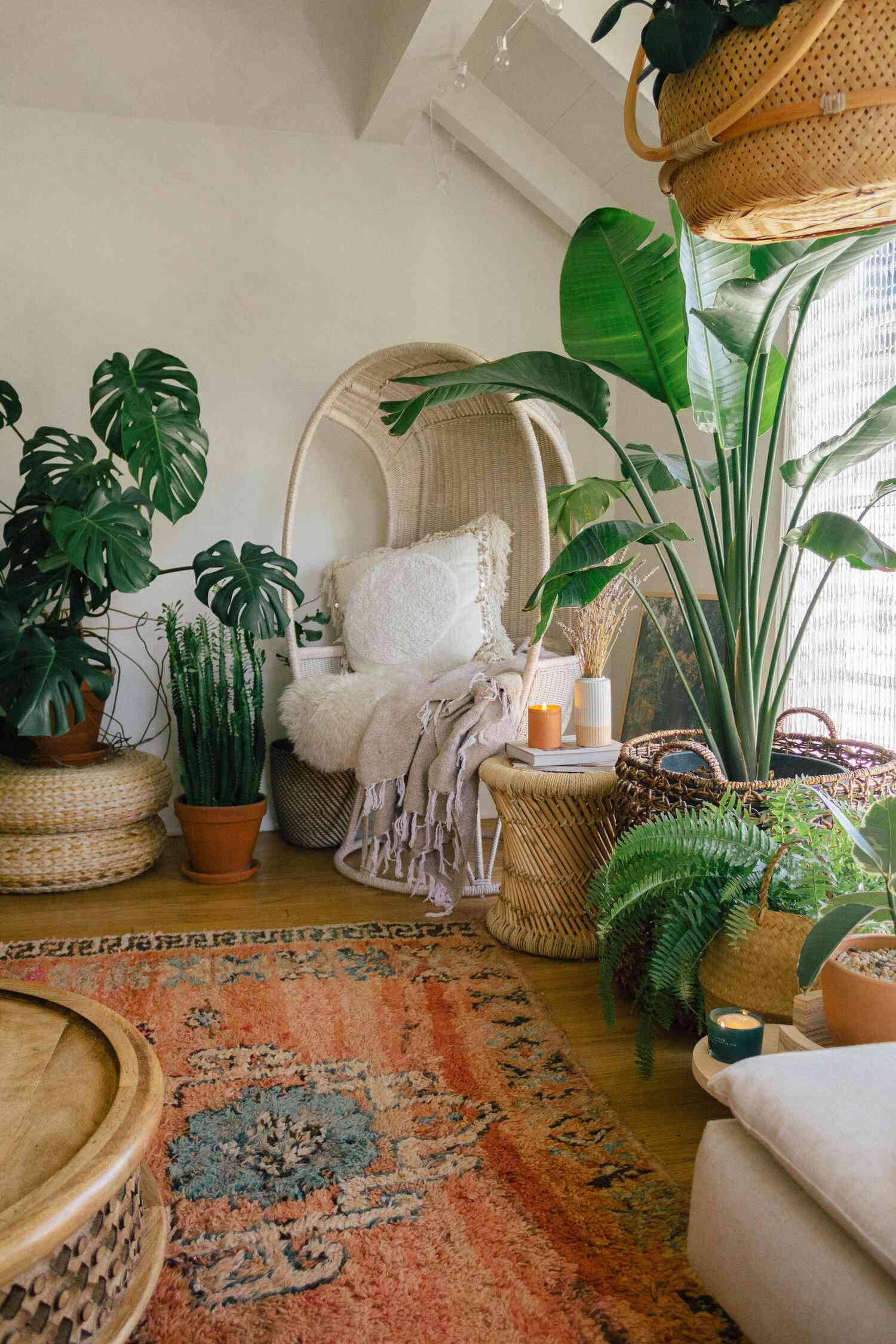 Boho living room with lots of plants