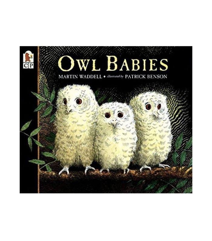 Martin Waddell Owl Babies