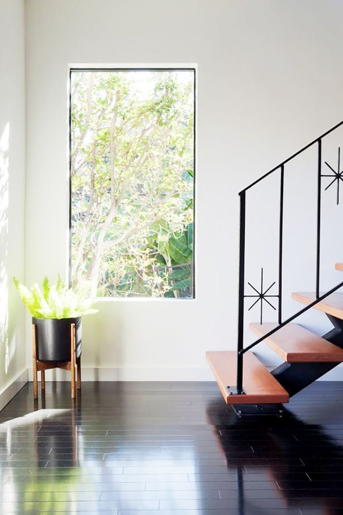 Foxtail fern in a mid-century planter in front of a bright window and staircase