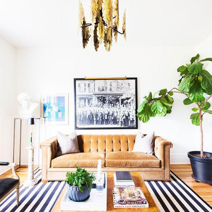Brutalist living room with velvet sofa, bronze chandelier, and house plants
