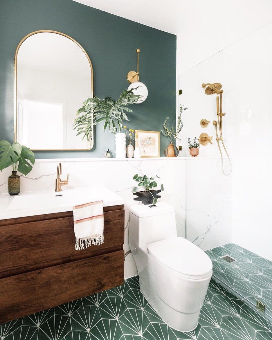 Bathroom with plants and philodendron hope