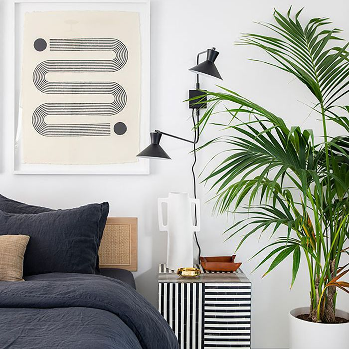 bedroom with tall plant and white walls