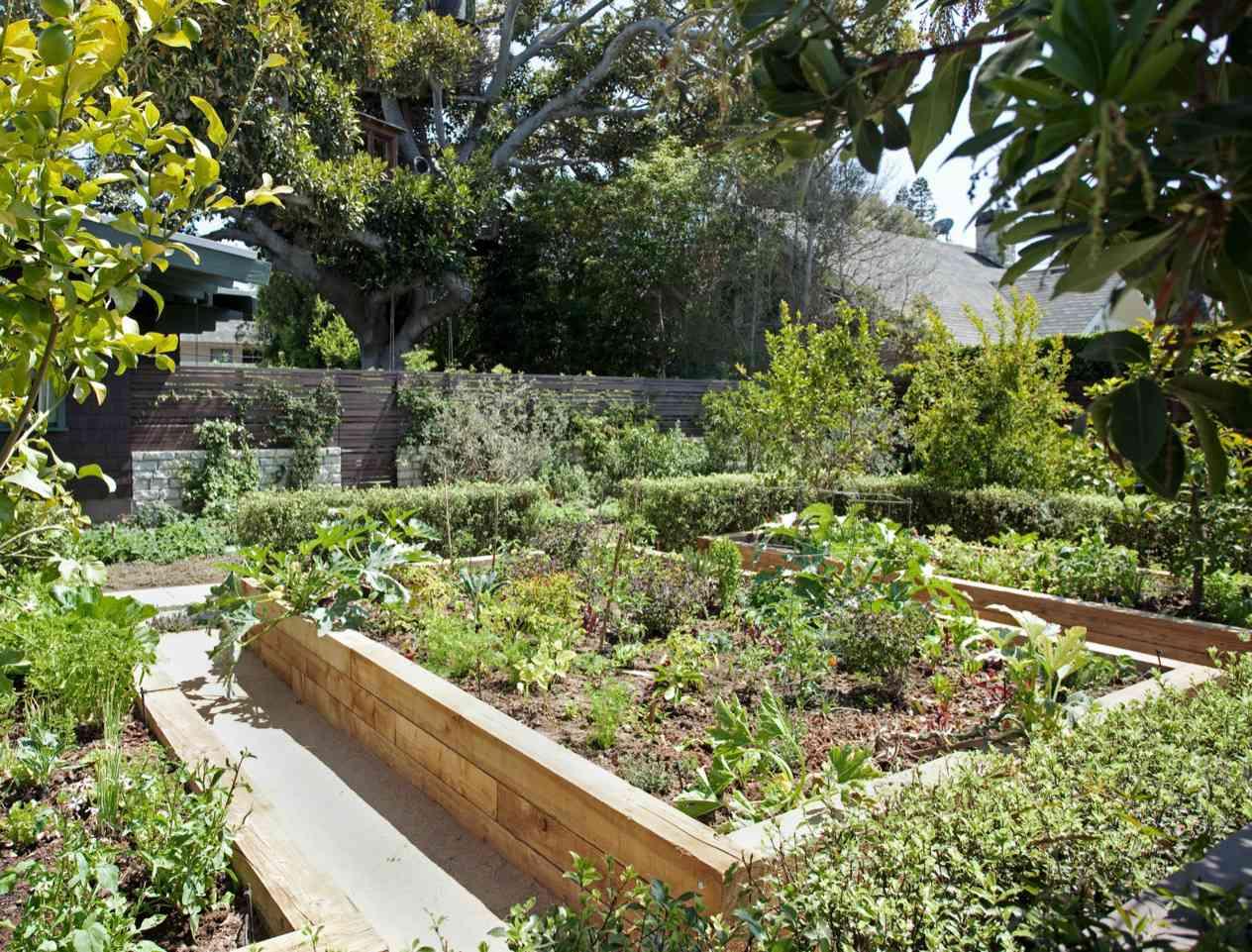 classic wood raised garden bed