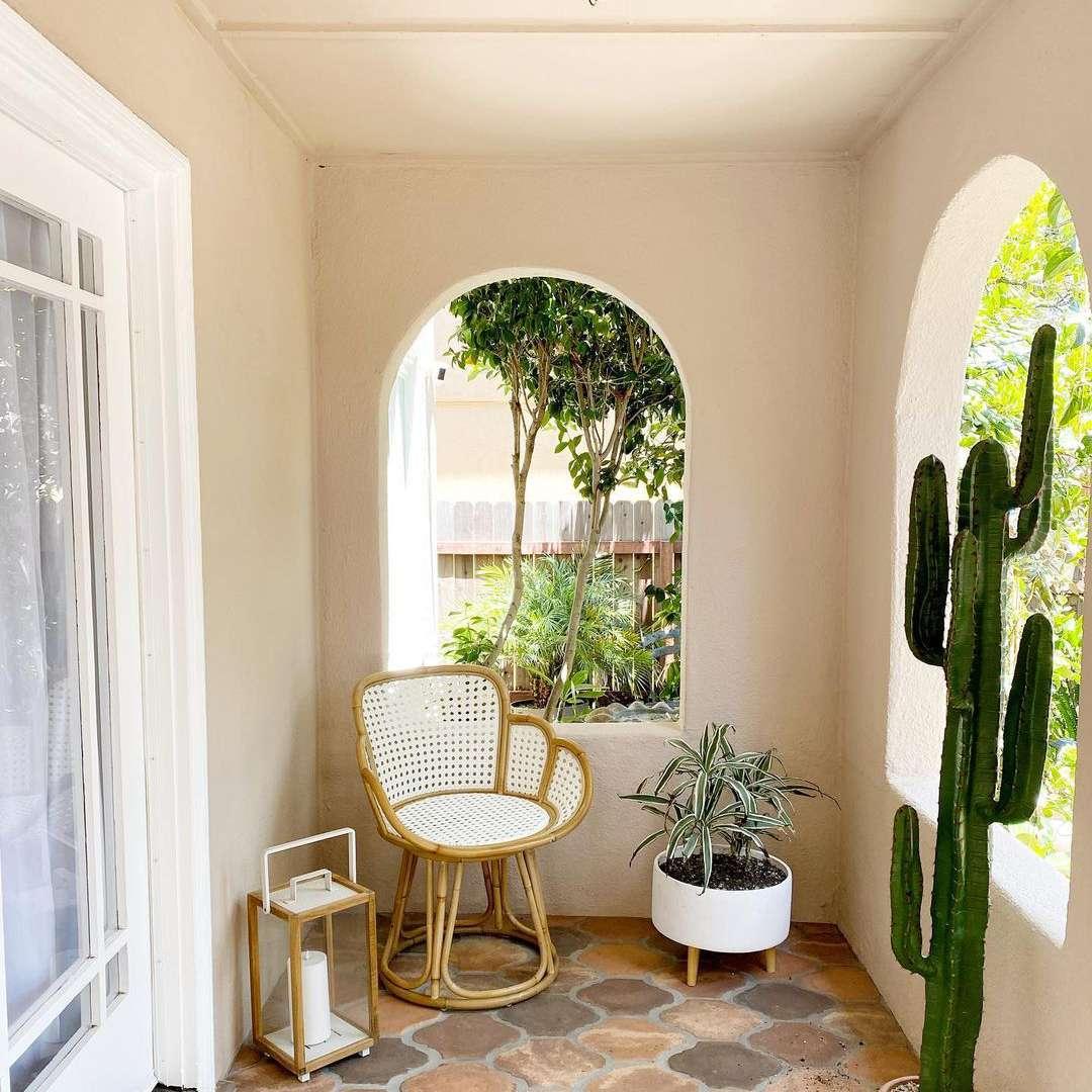 Patio with cactus
