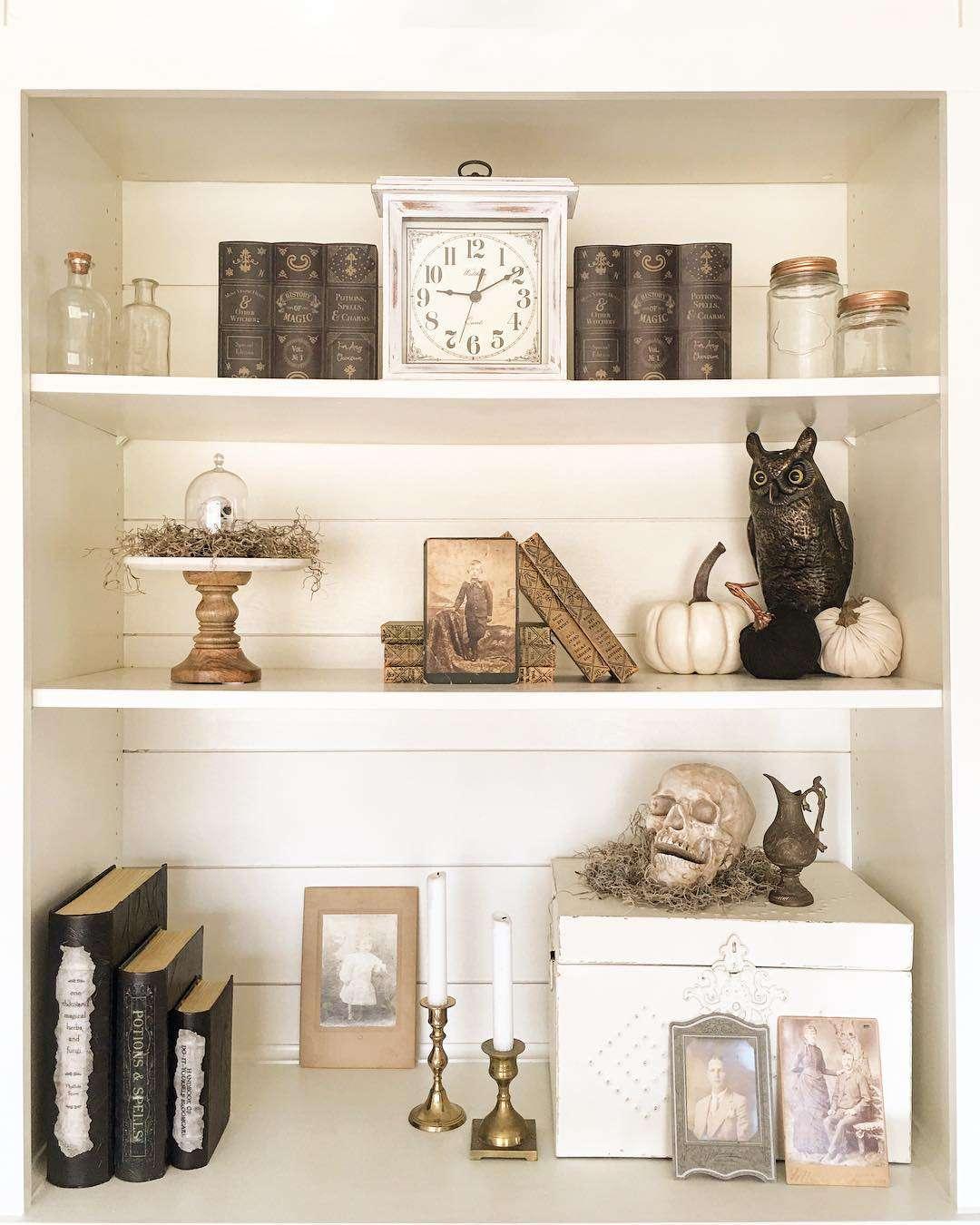Bookshelf with skull and owl