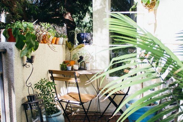 balcony herb garden with plenty of plants