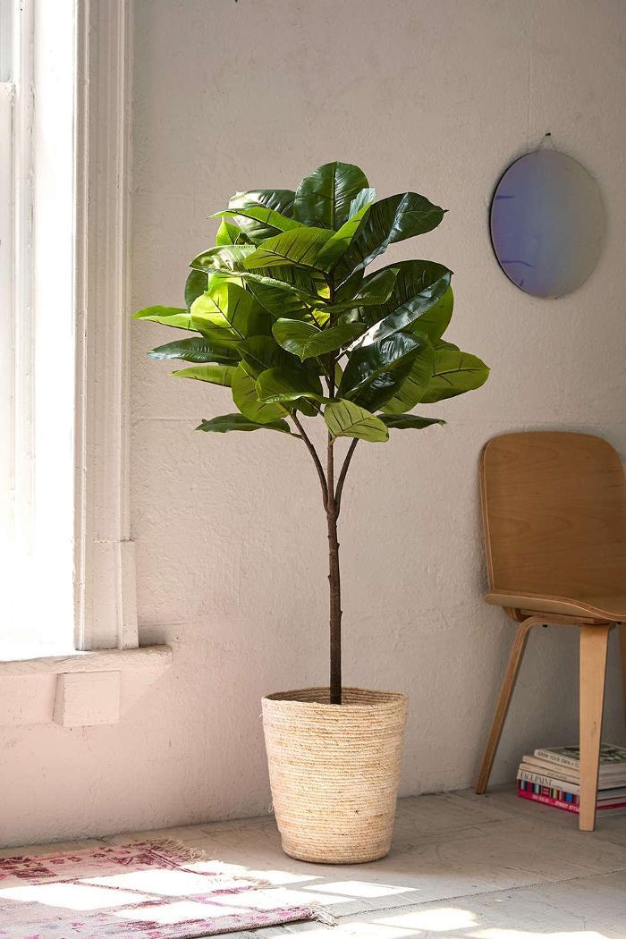 Potted Faux Rubber Tree