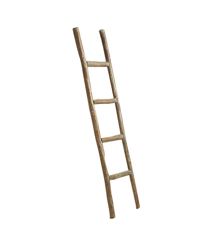 World Market Decorative Eucalyptus Ladder