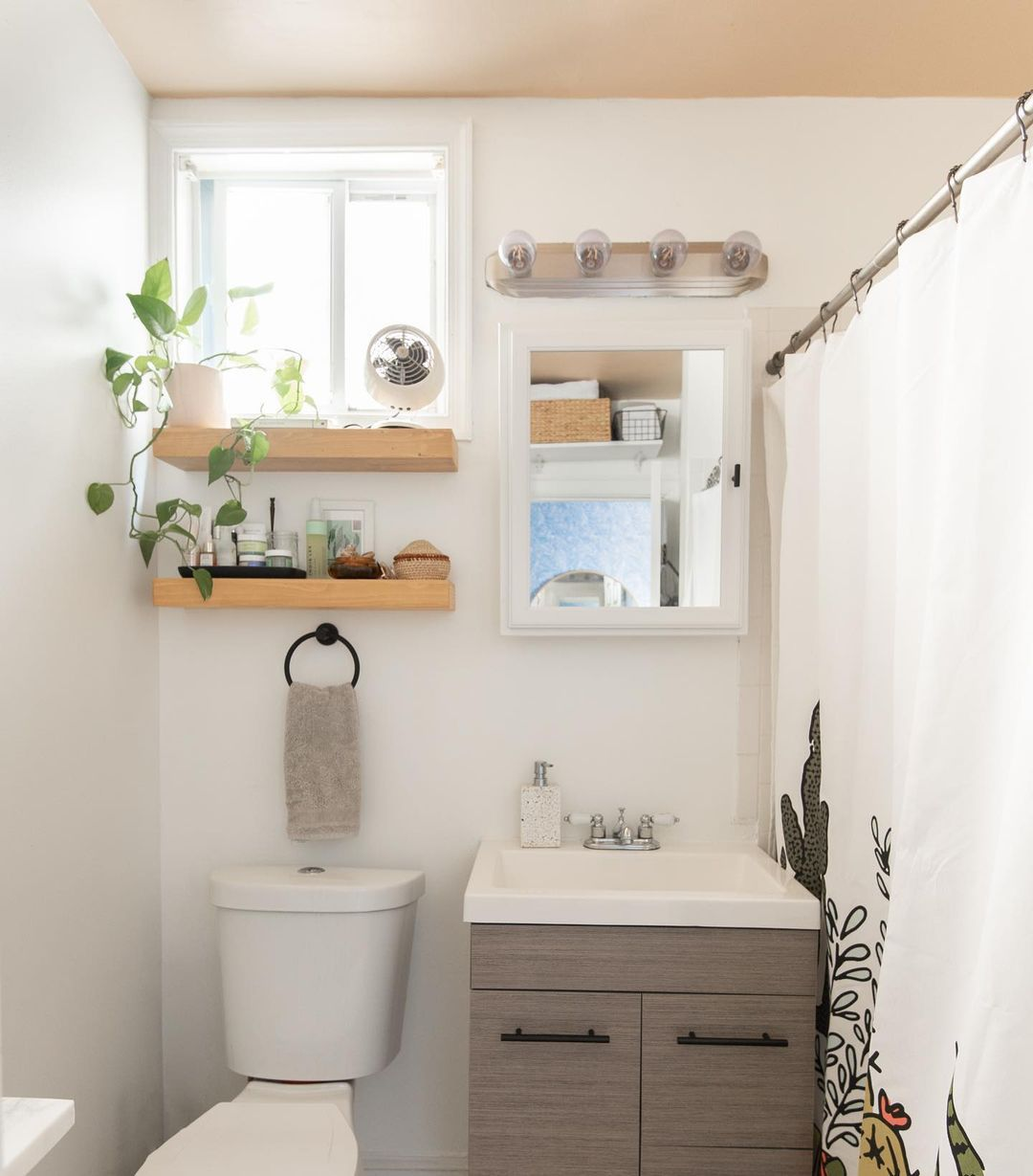bathroom with painted ceiling, open shelving and plants
