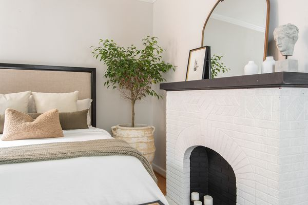 Bedroom corner with large ficus tree.