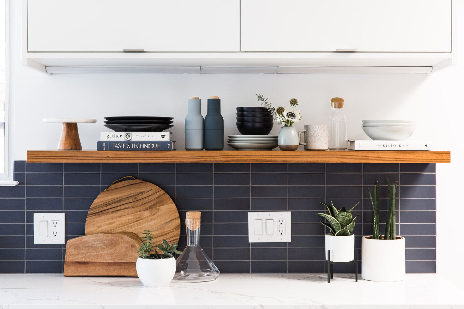 Snake plant and succulents on a modern kitchen countertop