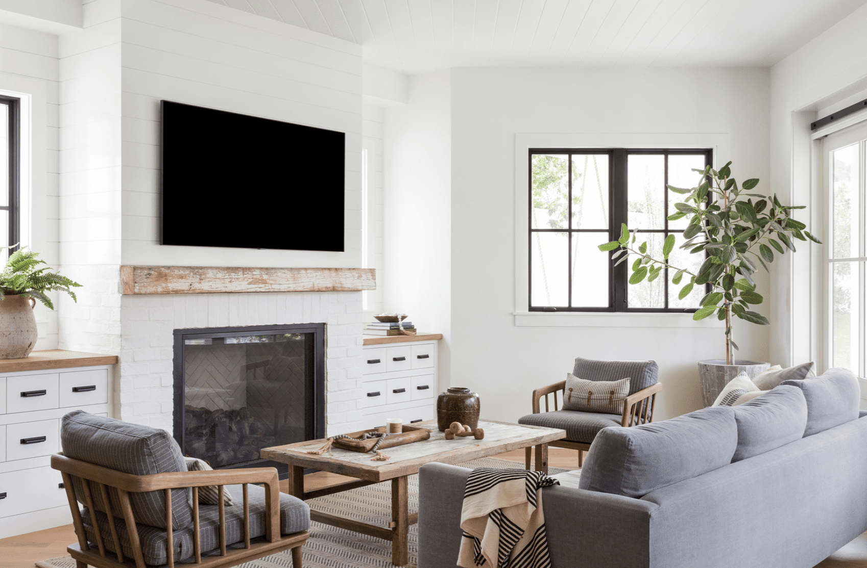 Living room with a plant
