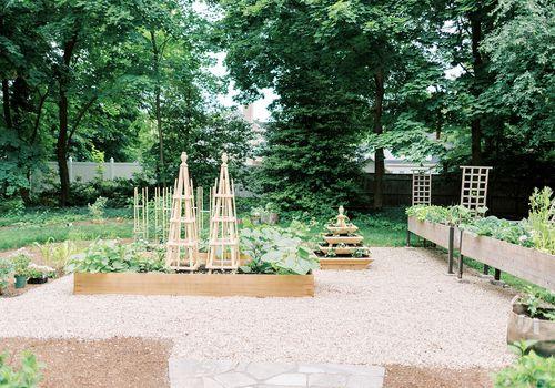 best summer garden plants