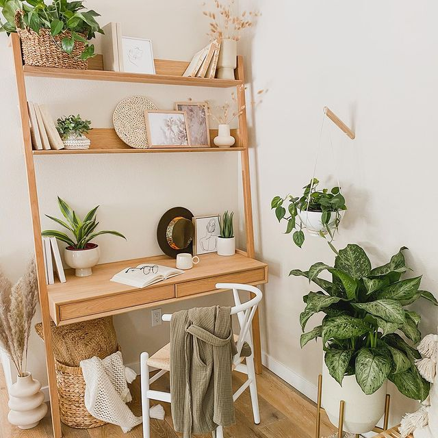Chinese evergreen in a boho office nook