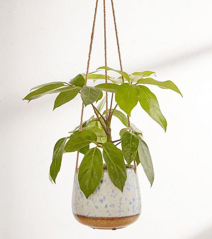 Speckled Ceramic Hanging Planter