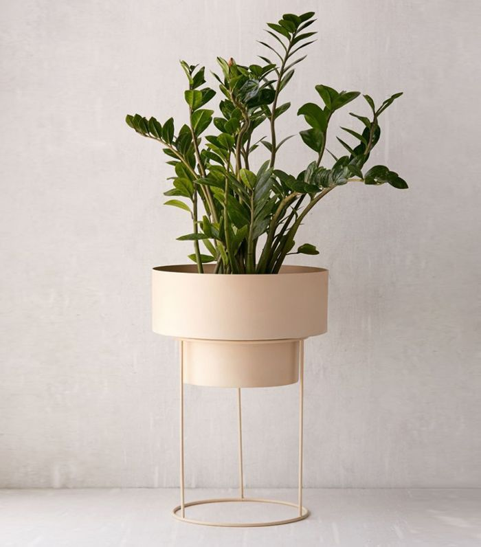 Adelphi 6 Planter - Gold One Size at Urban Outfitters