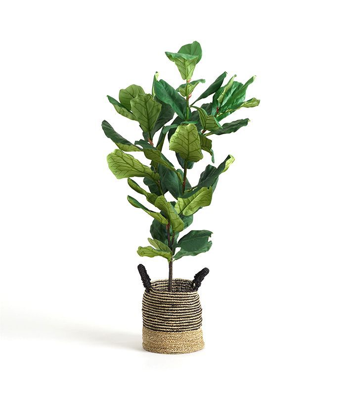 5 Ft Faux Fiddle Leaf Fig Plant: Green by World Market