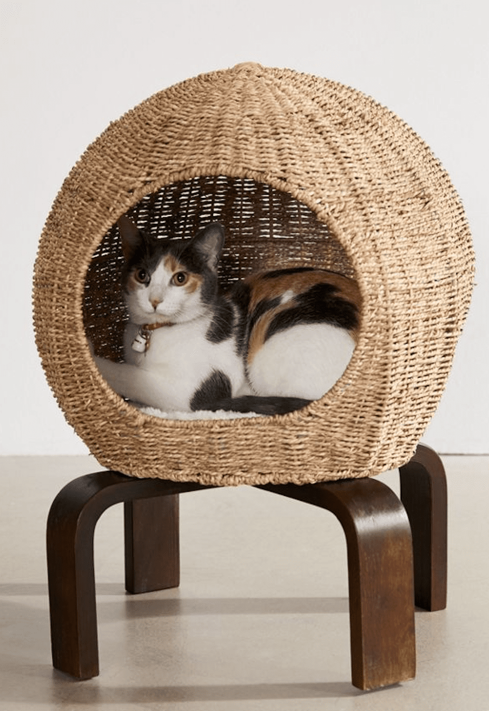 Urban Outfitters Cat Pod