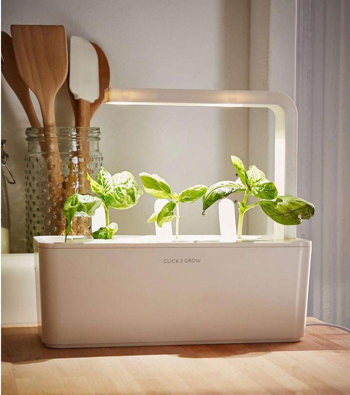 Click & Grow Smart Herb Garden Starter Kit