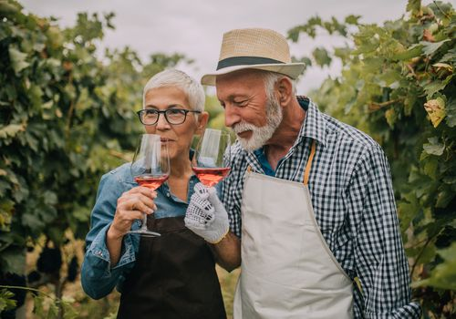 a couple drinking rosé in a vineyard