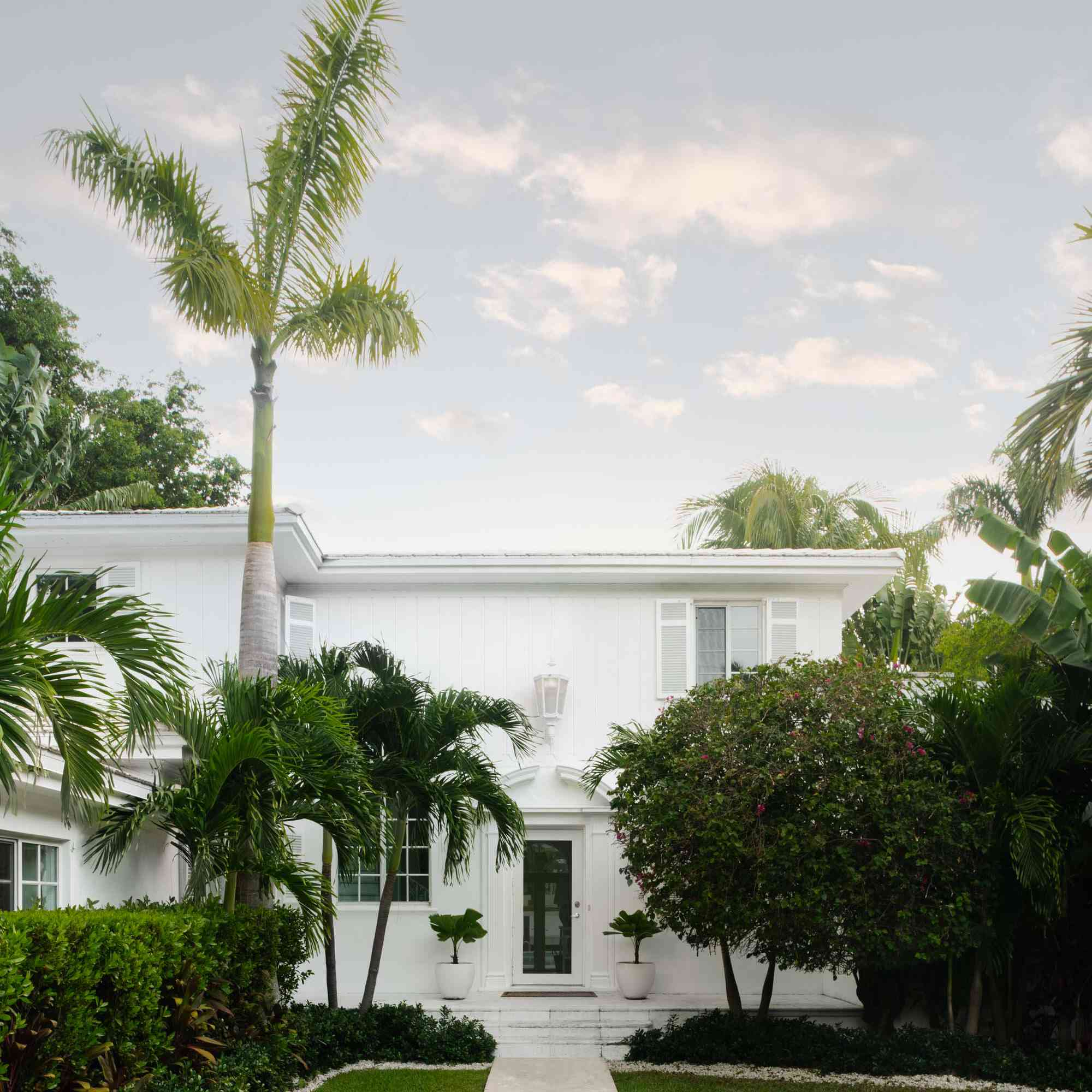 Exterior home with large palm tree in the shot.