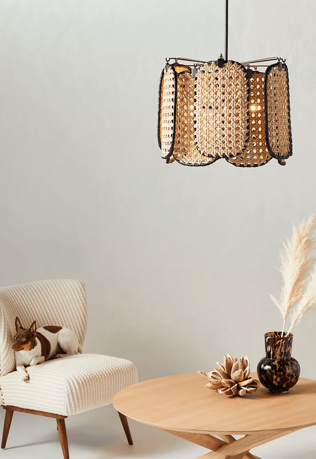 A midcentury modern rattan chandelier, currently for sale at Anthropologie