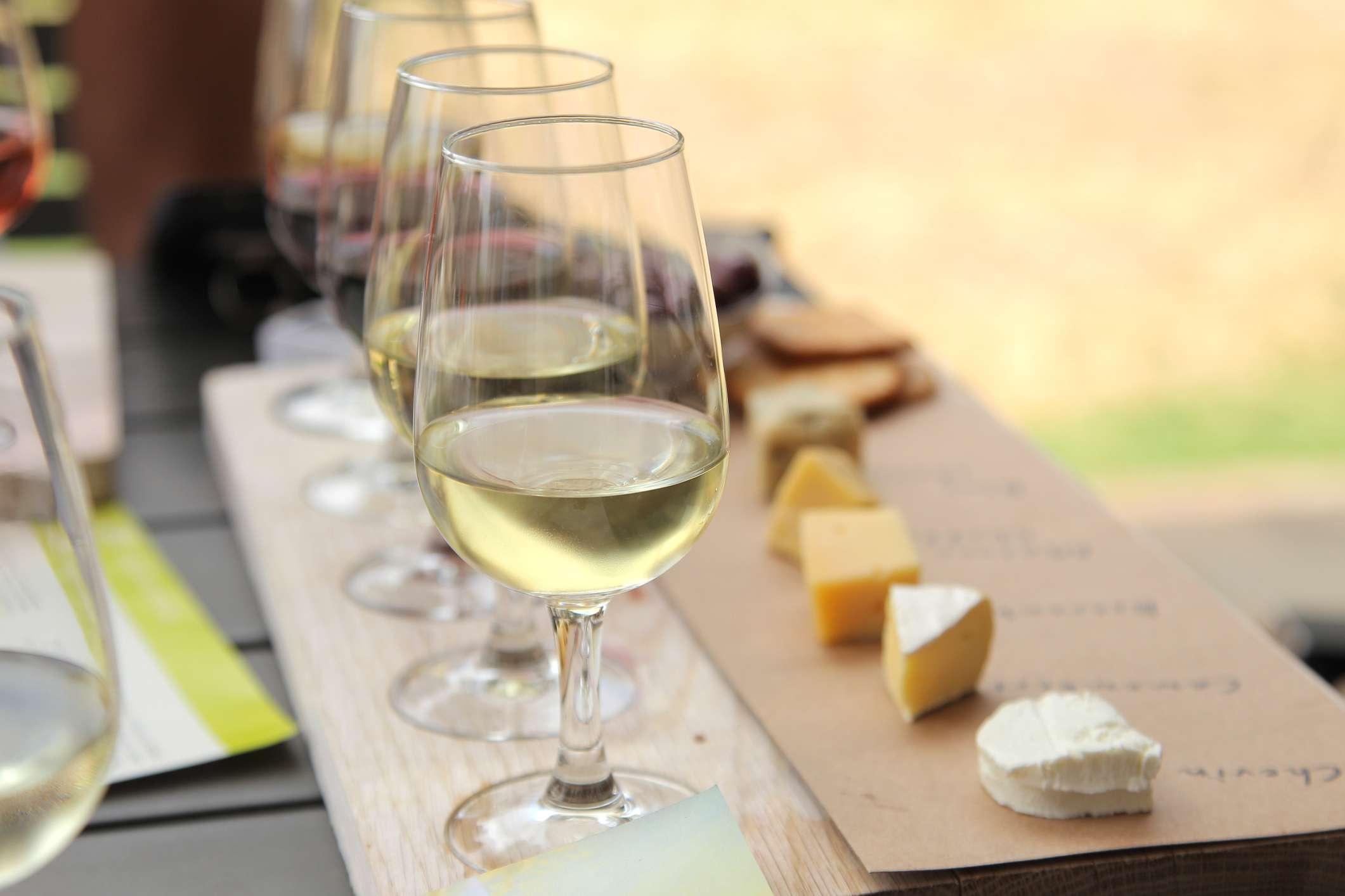 Wine tasting flight in outdoor setting