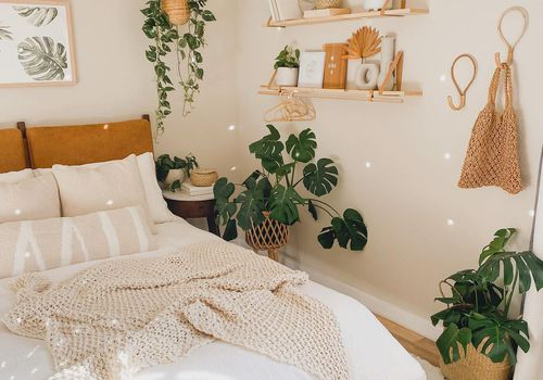 Bedroom with soft light, monstera and pothos plants.