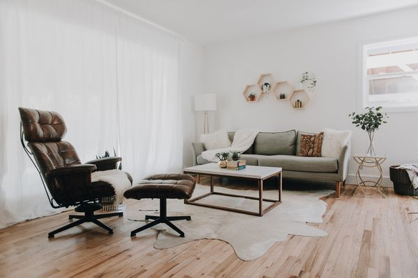 living room with mid-century modern-inspired furniture