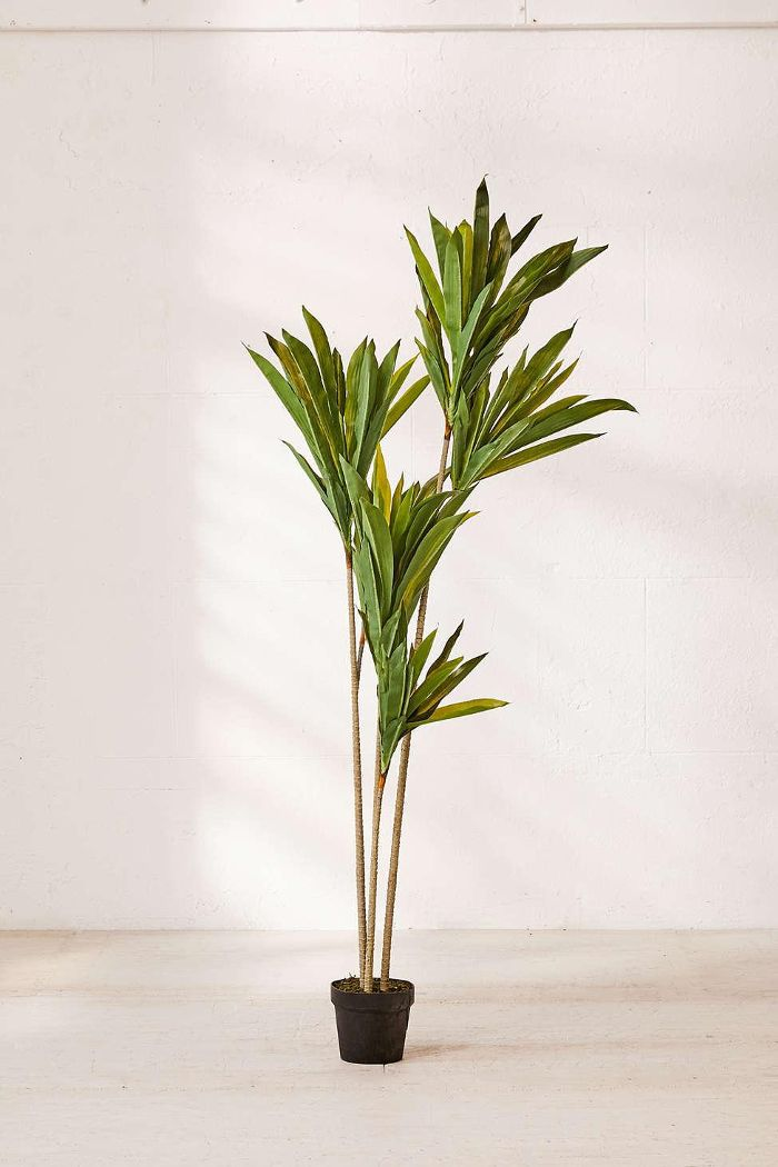 Urban Outfitters Dracena 5' Potted Faux Tree