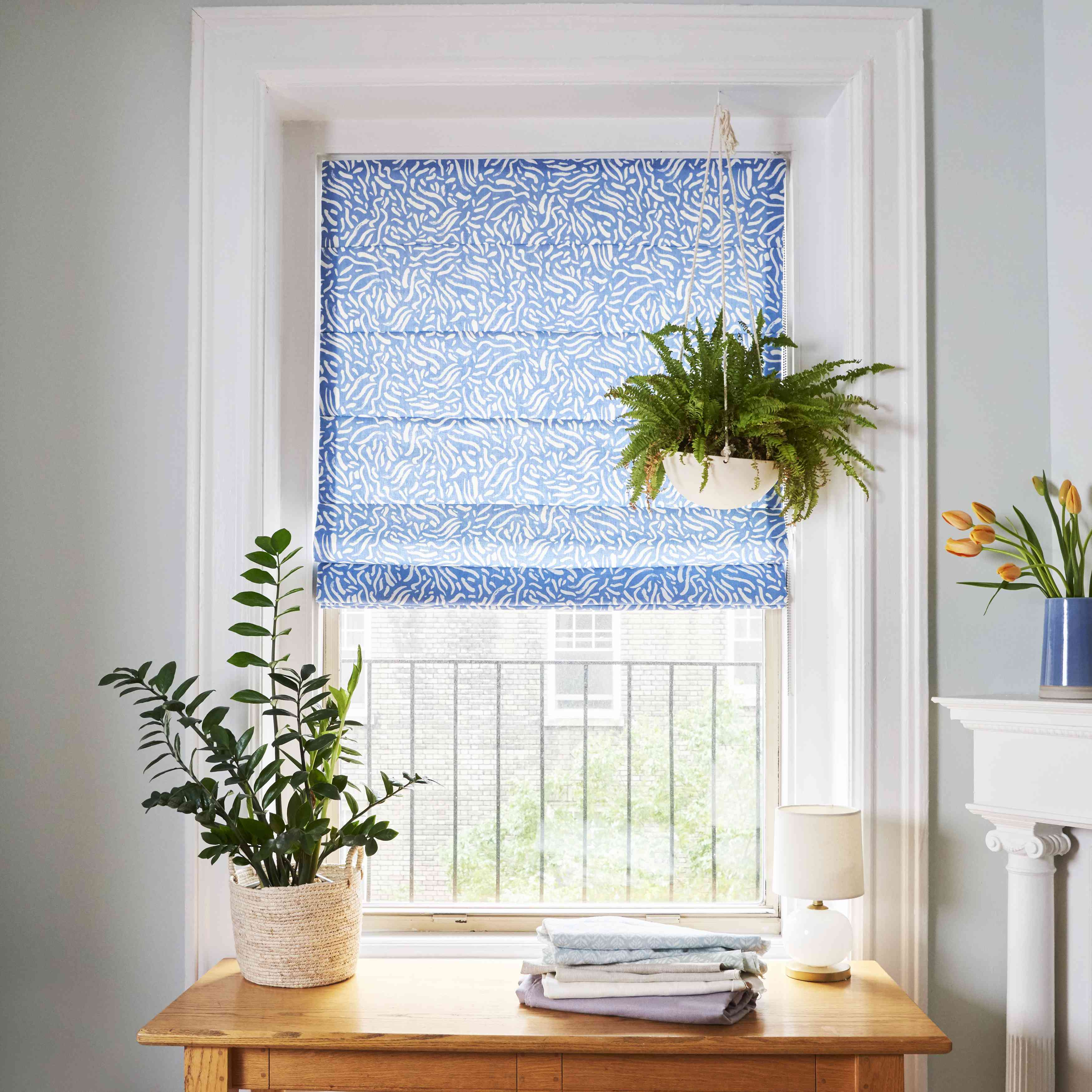 Chic window shade with hanging plant.
