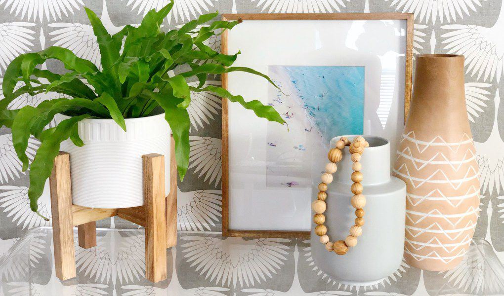 Bird's nest fern in a modern planter next to vases and a frame
