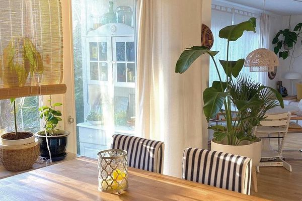 kitchen herb garden afro bohemian living